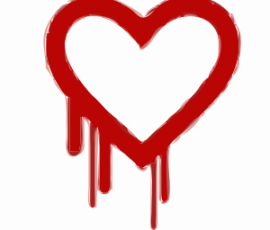 Heartbleed-Patch-Needed